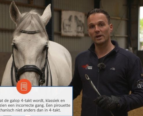 Dressage2Learn Werk aan de hand Galop is een 3-talkt