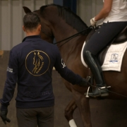 Dressage2Learn piaffe aanleren