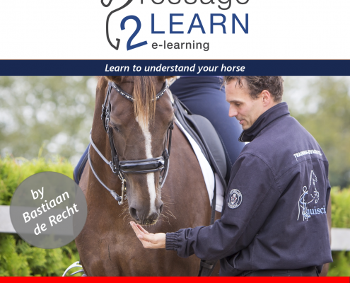 Dressage2Learn, Draf Biomechanica Bastiaan de Recht Dressuur