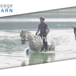 Dressage2Learn Schakelen